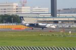 空とぶイルカさんが、成田国際空港で撮影したオーロラ DHC-8-402Q Dash 8の航空フォト(写真)