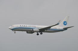 amagoさんが、成田国際空港で撮影した厦門航空 737-85Cの航空フォト(写真)