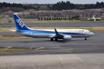 turenoアカクロさんが、成田国際空港で撮影した全日空 737-881の航空フォト(写真)