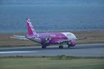 おぺちゃんさんが、関西国際空港で撮影したピーチ A320-214の航空フォト(写真)