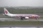 khideさんが、新千歳空港で撮影した中国国際航空 737-86Nの航空フォト(写真)