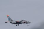 rjccさんが、千歳基地で撮影した航空自衛隊 T-4の航空フォト(写真)