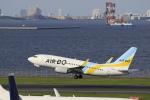 Gpapaさんが、羽田空港で撮影したAIR DO 737-781の航空フォト(写真)