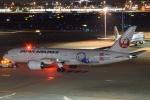 なかむーさんが、羽田空港で撮影した日本航空 787-8 Dreamlinerの航空フォト(写真)