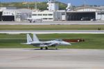 hnd_okaさんが、那覇空港で撮影した航空自衛隊 F-15J Eagleの航空フォト(写真)