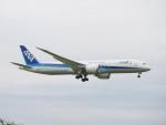 セッキーさんが、成田国際空港で撮影した全日空 787-9の航空フォト(写真)