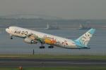 ceskykrumlovさんが、羽田空港で撮影したAIR DO 767-381の航空フォト(写真)