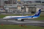 msrwさんが、福岡空港で撮影した全日空 737-881の航空フォト(写真)