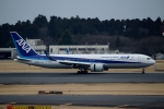 ハピネスさんが、成田国際空港で撮影した全日空 767-381/ERの航空フォト(写真)