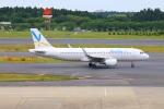 zero1さんが、成田国際空港で撮影したバニラエア A320-216の航空フォト(写真)