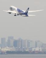 まさとしさんが、羽田空港で撮影した全日空 787-8 Dreamlinerの航空フォト(写真)