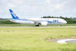 チャッピー・シミズさんが、宮古空港で撮影した全日空 787-8 Dreamlinerの航空フォト(写真)