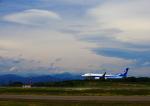 タミーさんが、静岡空港で撮影した全日空 737-881の航空フォト(写真)
