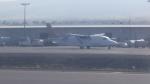 AE31Xさんが、コナ国際空港で撮影したトランスエア 330/360の航空フォト(写真)
