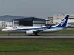 国府宮さんが、伊丹空港で撮影した全日空 737-881の航空フォト(写真)