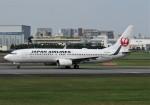 国府宮さんが、伊丹空港で撮影した日本航空 737-846の航空フォト(写真)