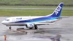 誘喜さんが、新石垣空港で撮影したANAウイングス 737-54Kの航空フォト(写真)