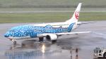 誘喜さんが、新石垣空港で撮影した日本トランスオーシャン航空 737-4Q3の航空フォト(写真)