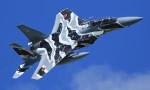 VIPERさんが、那覇空港で撮影した航空自衛隊 F-15DJ Eagleの航空フォト(写真)