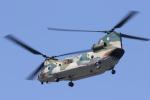 Tomochanさんが、函館駐屯地で撮影した航空自衛隊 CH-47J/LRの航空フォト(写真)