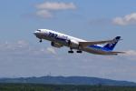 こだしさんが、新千歳空港で撮影した全日空 787-8 Dreamlinerの航空フォト(写真)