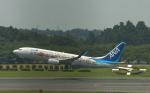 fukucyanさんが、成田国際空港で撮影した全日空 737-881の航空フォト(写真)
