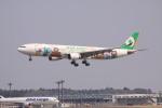 けいとパパさんが、成田国際空港で撮影したエバー航空 A330-302Xの航空フォト(写真)
