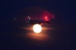 竜747さんが、羽田空港で撮影した全日空 787-8 Dreamlinerの航空フォト(写真)