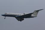 はやっち!さんが、岐阜基地で撮影した航空自衛隊 U-4 Gulfstream IV (G-IV-MPA)の航空フォト(写真)