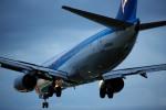 かぷちーのさんが、伊丹空港で撮影した全日空 737-881の航空フォト(写真)
