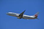 こだしさんが、新千歳空港で撮影した日本航空 737-846の航空フォト(写真)