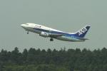 fukucyanさんが、成田国際空港で撮影したANAウイングス 737-5L9の航空フォト(写真)