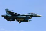さかなやさんが、小松空港で撮影した航空自衛隊 F-2Aの航空フォト(写真)