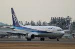 ローリーさんが、松山空港で撮影した全日空 737-881の航空フォト(写真)