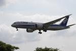 wagonist24wさんが、成田国際空港で撮影した全日空 787-8 Dreamlinerの航空フォト(写真)