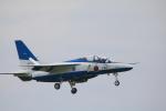 msrwさんが、松島基地で撮影した航空自衛隊 T-4の航空フォト(写真)