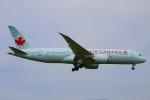 zero1さんが、成田国際空港で撮影したエア・カナダ 787-8 Dreamlinerの航空フォト(写真)