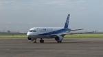 Nez-Nokさんが、羽田空港で撮影した全日空 A320-211の航空フォト(写真)