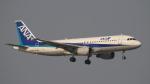 SVMさんが、羽田空港で撮影した全日空 A320-211の航空フォト(写真)