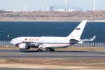 どりーむらいなーさんが、羽田空港で撮影したロシア航空 Il-96-300の航空フォト(写真)