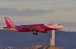 Take51さんが、関西国際空港で撮影したピーチ A320-214の航空フォト(写真)