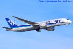 いおりさんが、山口宇部空港で撮影した全日空 787-8 Dreamlinerの航空フォト(写真)