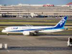 Mame @ TYOさんが、羽田空港で撮影した全日空 787-8 Dreamlinerの航空フォト(写真)