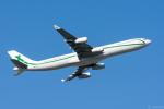 ぱん_くまさんが、成田国際空港で撮影したエアXチャーター A340-312の航空フォト(写真)