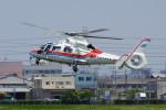 TAC MATSUさんが、八尾空港で撮影した広島市消防航空隊 AS365N3 Dauphin 2の航空フォト(写真)
