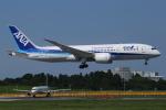 カンクンさんが、成田国際空港で撮影した全日空 787-8 Dreamlinerの航空フォト(写真)