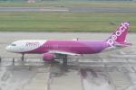 HEATHROWさんが、仙台空港で撮影したピーチ A320-214の航空フォト(写真)
