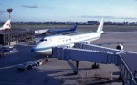 ハミングバードさんが、伊丹空港で撮影した全日空 747SR-81の航空フォト(写真)