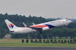 こだしさんが、成田国際空港で撮影したマレーシア航空 737-8H6の航空フォト(写真)