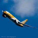 michioさんが、成田国際空港で撮影したスクート 787-8 Dreamlinerの航空フォト(写真)
